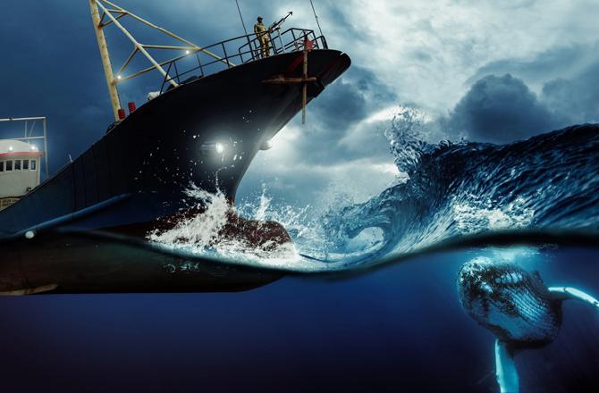 Seafarers_d